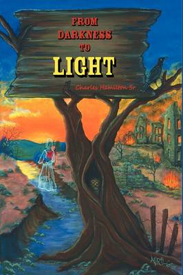 From Darkness to Light (Paperback)
