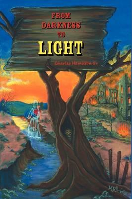 From Darkness to Light (Hardback)