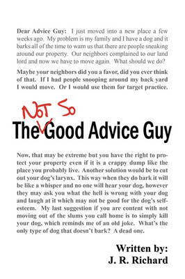 The Not So Good Advice Guy (Paperback)