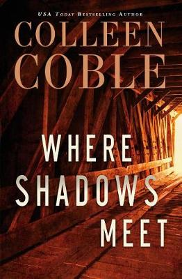 Where Shadows Meet: A Romantic Suspense Novel (Hardback)
