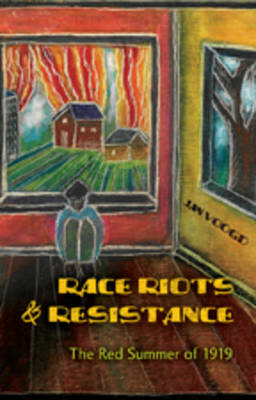 Race Riots and Resistance: The Red Summer of 1919 - African-American Literature and Culture 18 (Hardback)