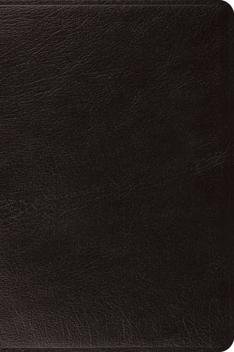 ESV Pastor's Bible (Leather / fine binding)