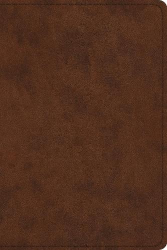 ESV Pastor's Bible (Leather / fine binding)
