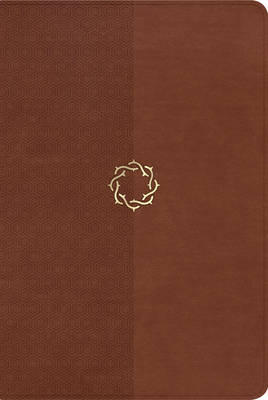 NKJV Essential Teen Study Bible: Rose LeatherTouch (Leather / fine binding)