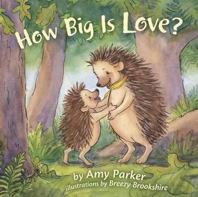 How Big Is Love? (padded board book) (Board book)