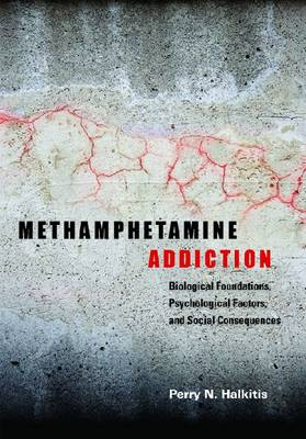 Methamphetamine Addiction: Biological Foundations, Psychological Factors, and Social Consequences (Hardback)