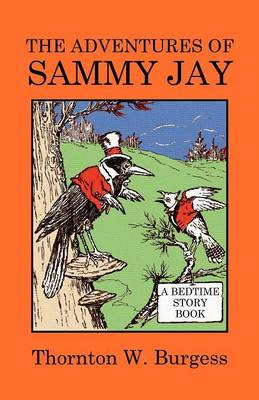 The Adventures of Sammy Jay (Paperback)