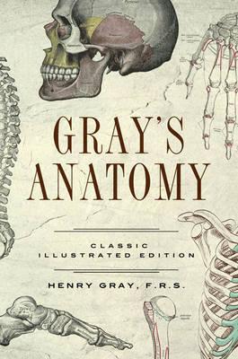 Gray's Anatomy: Classic Illustrated Edition - Fall River Classics (Hardback)