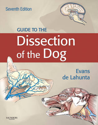 Guide to the Dissection of the Dog - .NET Developers Series (Hardback)