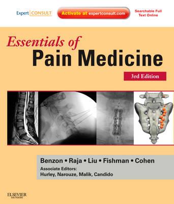 Essentials of Pain Medicine (Paperback)