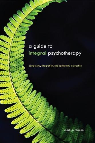 Guide to Integral Psychotherapy, A: Complexity, Integration, and Spirituality in Practice - SUNY series in Integral Theory (Paperback)