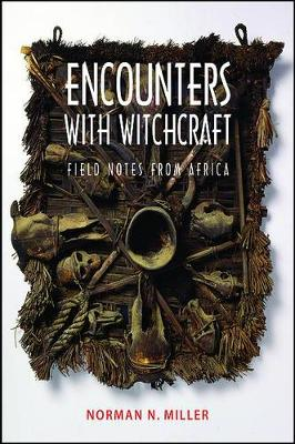 Encounters with Witchcraft: Field Notes from Africa (Paperback)
