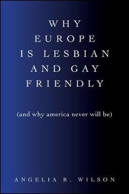 Why Europe Is Lesbian and Gay Friendly (and Why America Never Will Be) - SUNY series in Queer Politics and Cultures (Paperback)