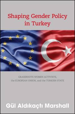 Shaping Gender Policy in Turkey: Grassroots Women Activists, the European Union, and the Turkish State (Paperback)