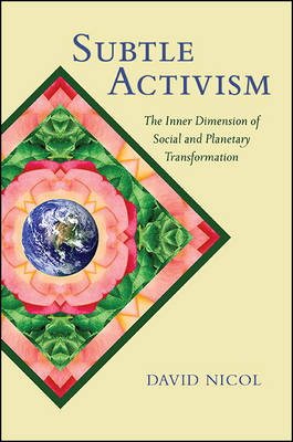 Subtle Activism: The Inner Dimension of Social and Planetary Transformation - SUNY series in Transpersonal and Humanistic Psychology (Hardback)