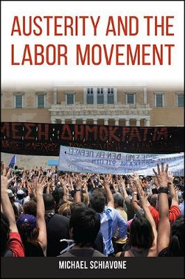Austerity and the Labor Movement (Paperback)