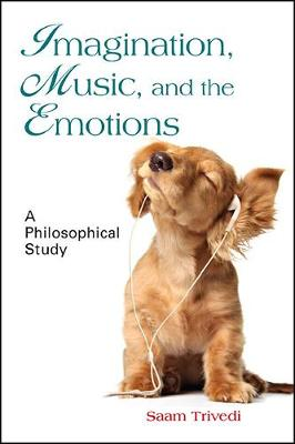 Imagination, Music, and the Emotions: A Philosophical Study (Hardback)