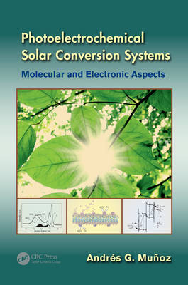 Photoelectrochemical Solar Conversion Systems: Molecular and Electronic Aspects (Hardback)