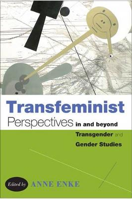 Transfeminist Perspectives in and beyond Transgender and Gender Studies (Paperback)
