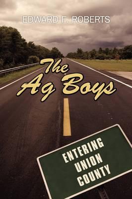 The AG Boys (Paperback)