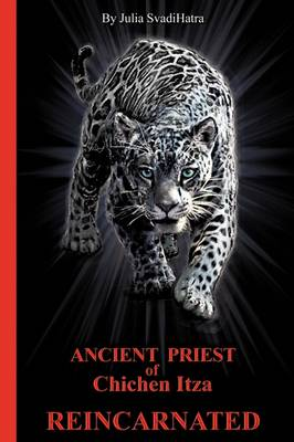 The Priest: Ancient Priest of Chichen Itza Reincarnated (Paperback)