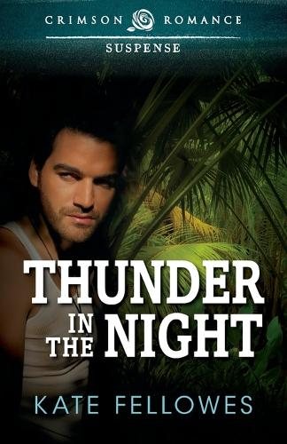 Thunder in the Night (Paperback)