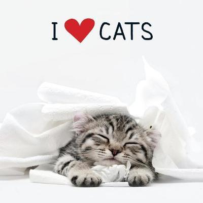 I Love Cats (Hardback)