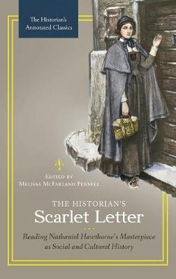 The Historian's Scarlet Letter: Reading Nathaniel Hawthorne's Masterpiece as Social and Cultural History (Hardback)