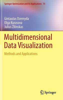 Multidimensional Data Visualization: Methods and Applications - Springer Optimization and Its Applications 75 (Hardback)
