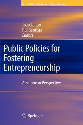 Public Policies for Fostering Entrepreneurship: A European Perspective - International Studies in Entrepreneurship 22 (Hardback)