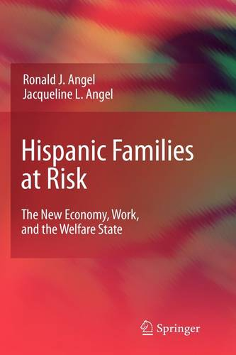 Hispanic Families at Risk: The New Economy, Work, and the Welfare State (Hardback)