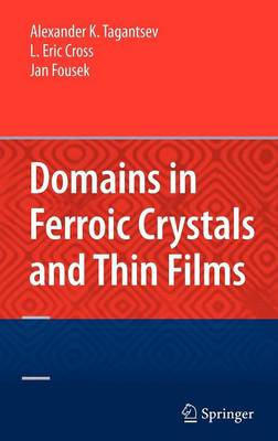 Domains in Ferroic Crystals and Thin Films (Hardback)