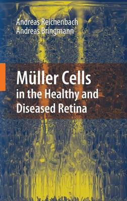 Muller Cells in the Healthy and Diseased Retina (Hardback)