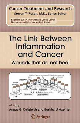 The Link Between Inflammation and Cancer: Wounds that do not heal - Cancer Treatment and Research 130 (Paperback)