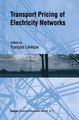 Transport Pricing of Electricity Networks (Paperback)