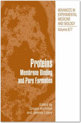 Proteins: Membrane Binding and Pore Formation - Advances in Experimental Medicine and Biology 677 (Hardback)