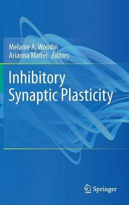 Inhibitory Synaptic Plasticity (Hardback)