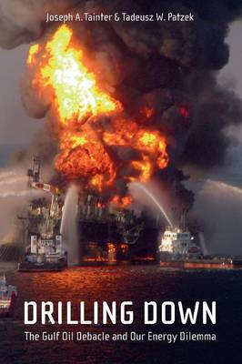 Drilling Down: The Gulf Oil Debacle and Our Energy Dilemma (Paperback)