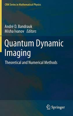 Quantum Dynamic Imaging: Theoretical and Numerical Methods - CRM Series in Mathematical Physics (Hardback)