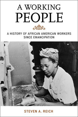 A Working People: A History of African American Workers Since Emancipation - The African American History Series (Hardback)