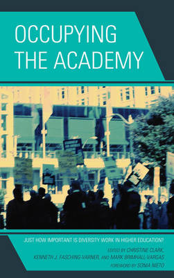Occupying the Academy: Just How Important is Diversity Work in Higher Education? (Hardback)