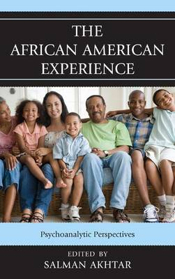 The African American Experience: Psychoanalytic Perspectives (Paperback)