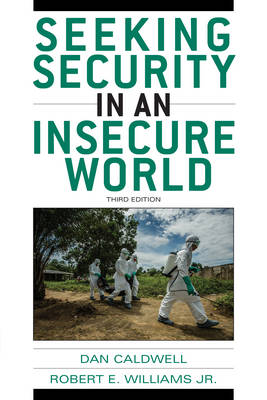 Seeking Security in an Insecure World (Hardback)