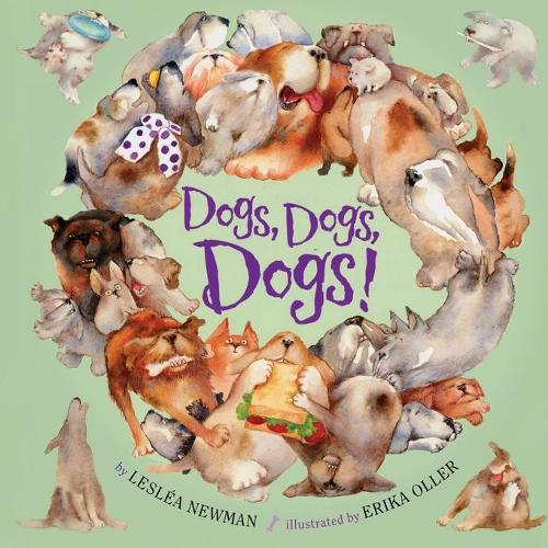 Dogs, Dogs, Dogs! (Paperback)