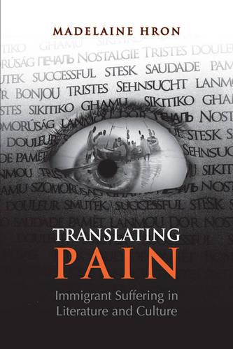 Translating Pain: Immigrant Suffering in Literature and Culture (Paperback)