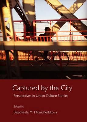 values in urban studies essay