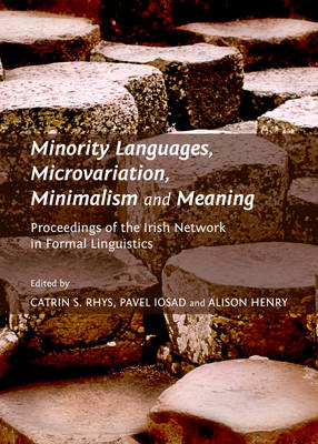 Minority Languages, Microvariation, Minimalism and Meaning: Proceedings of the Irish Network in Formal Linguistics (Hardback)