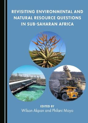 Revisiting Environmental and Natural Resource Questions in Sub-Saharan Africa (Hardback)