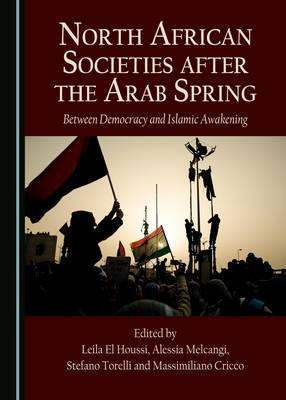 North African Societies After the Arab Spring: Between Democracy and Islamic Awakening (Hardback)
