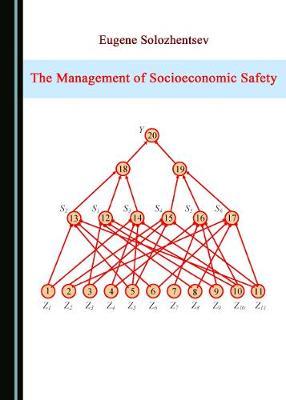 The Management of Socioeconomic Safety (Hardback)